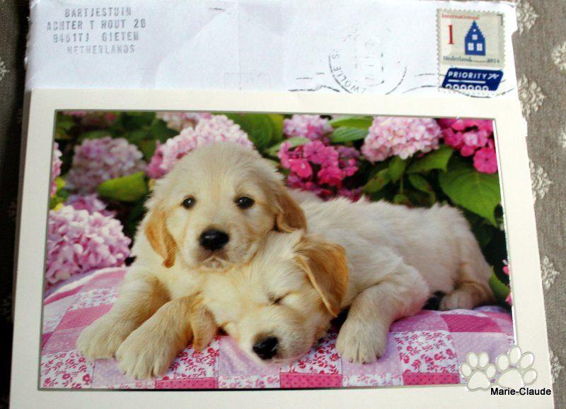 Des enveloppes bien accueillies !!!