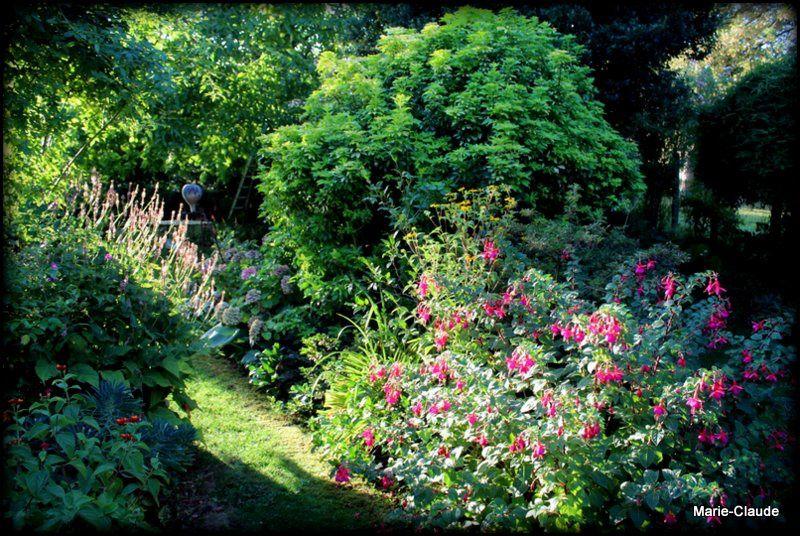 Petit tour de jardin au lever du soleil,