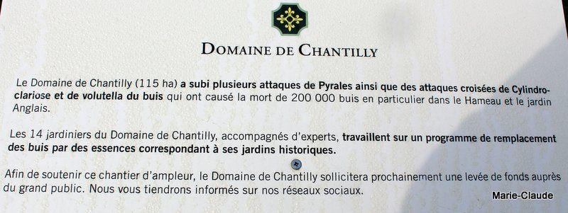 Chantilly, automne 2018,
