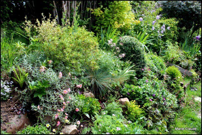 Mi-mai au jardin,