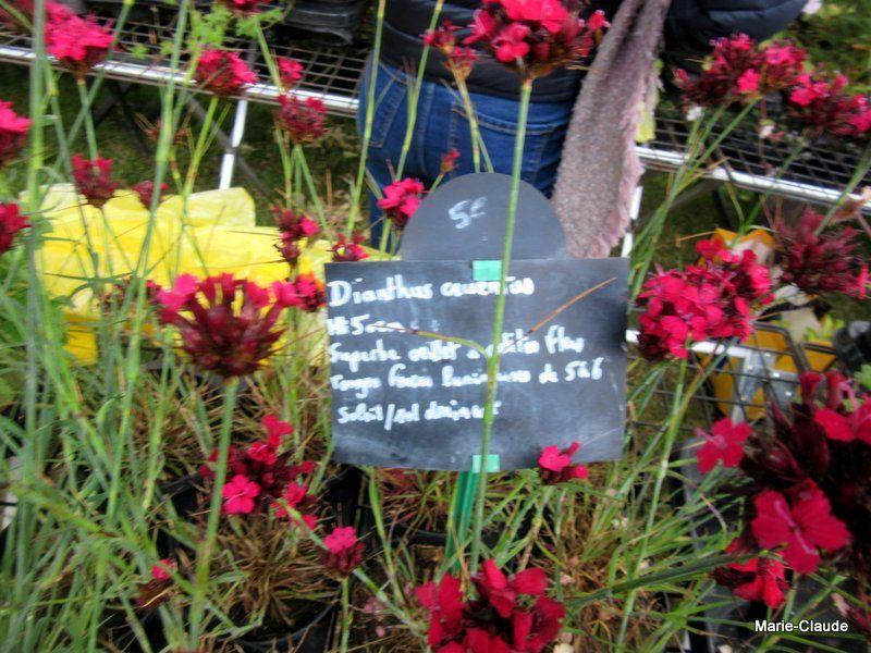 Journées doullennaises des jardins d'agrément,