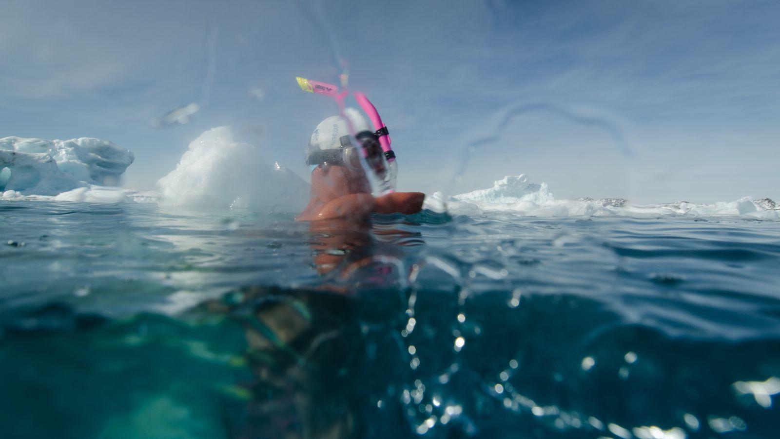 Le rêve d'un dauphin à Ilulissat.