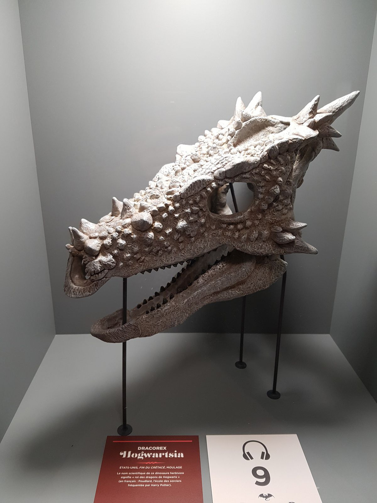 Des dragons..... aaahhhhh !!!!