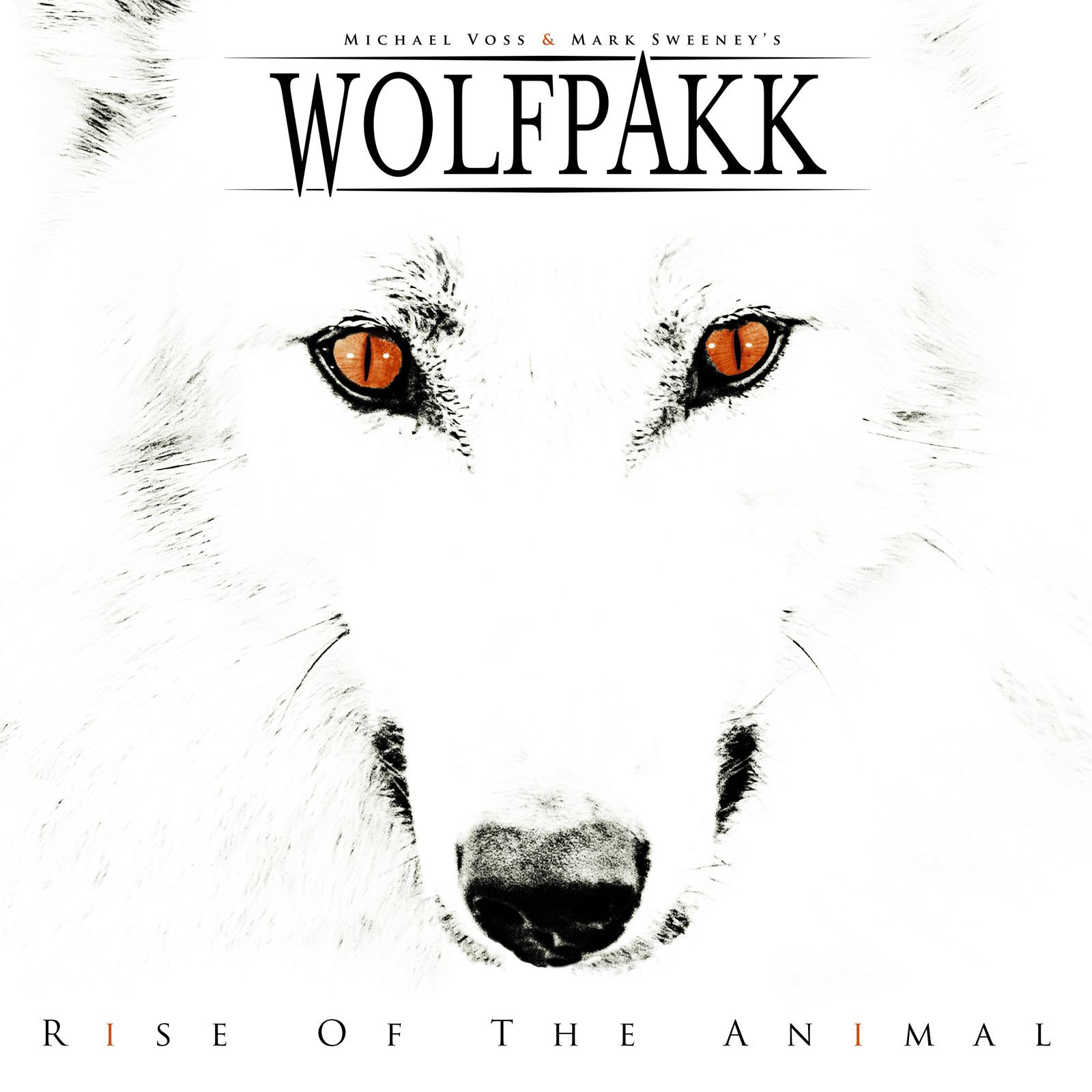 """CD review WOLFPAKK """"Rise of the animal"""""""