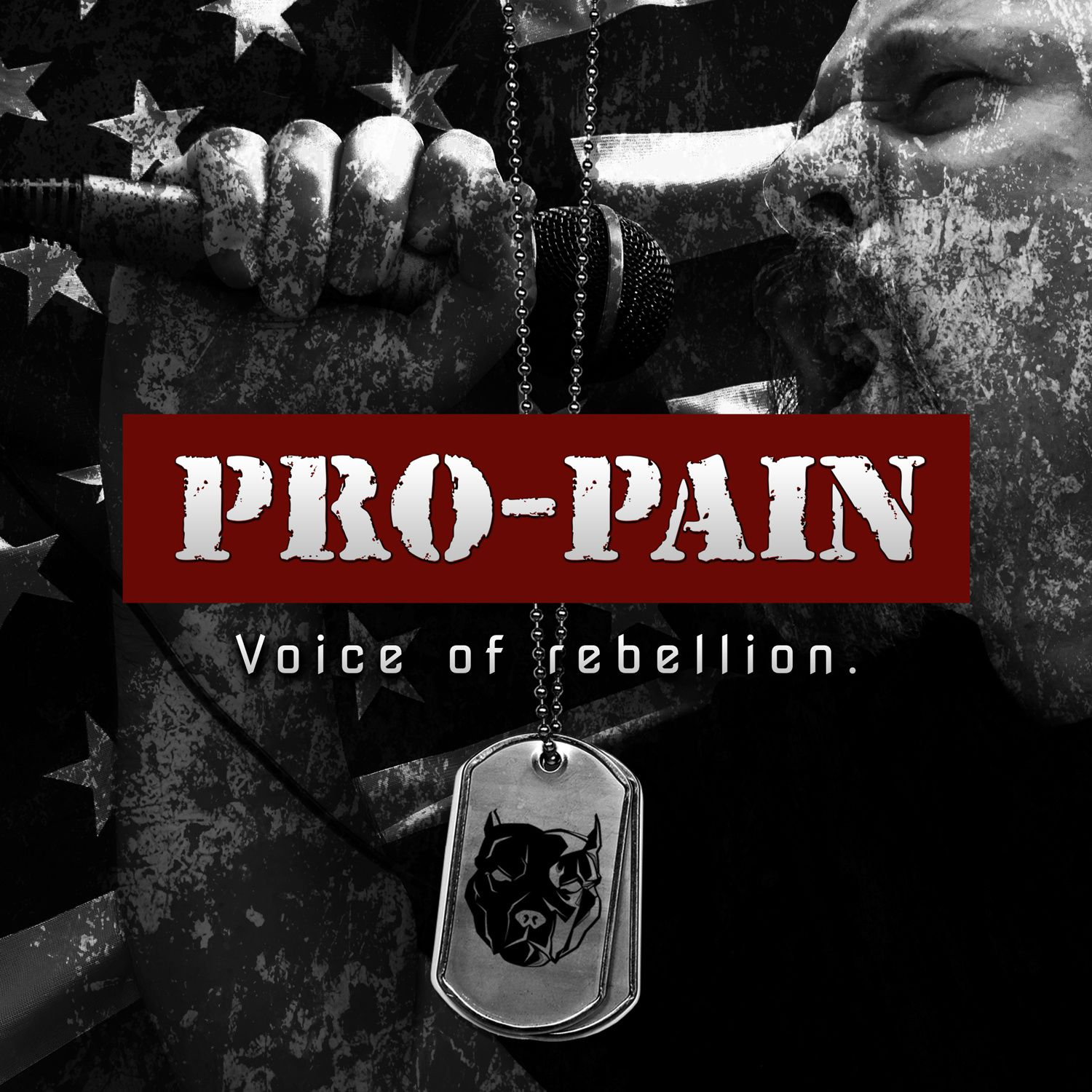 """CD review PRO-PAIN """"Voice of rebellion"""""""