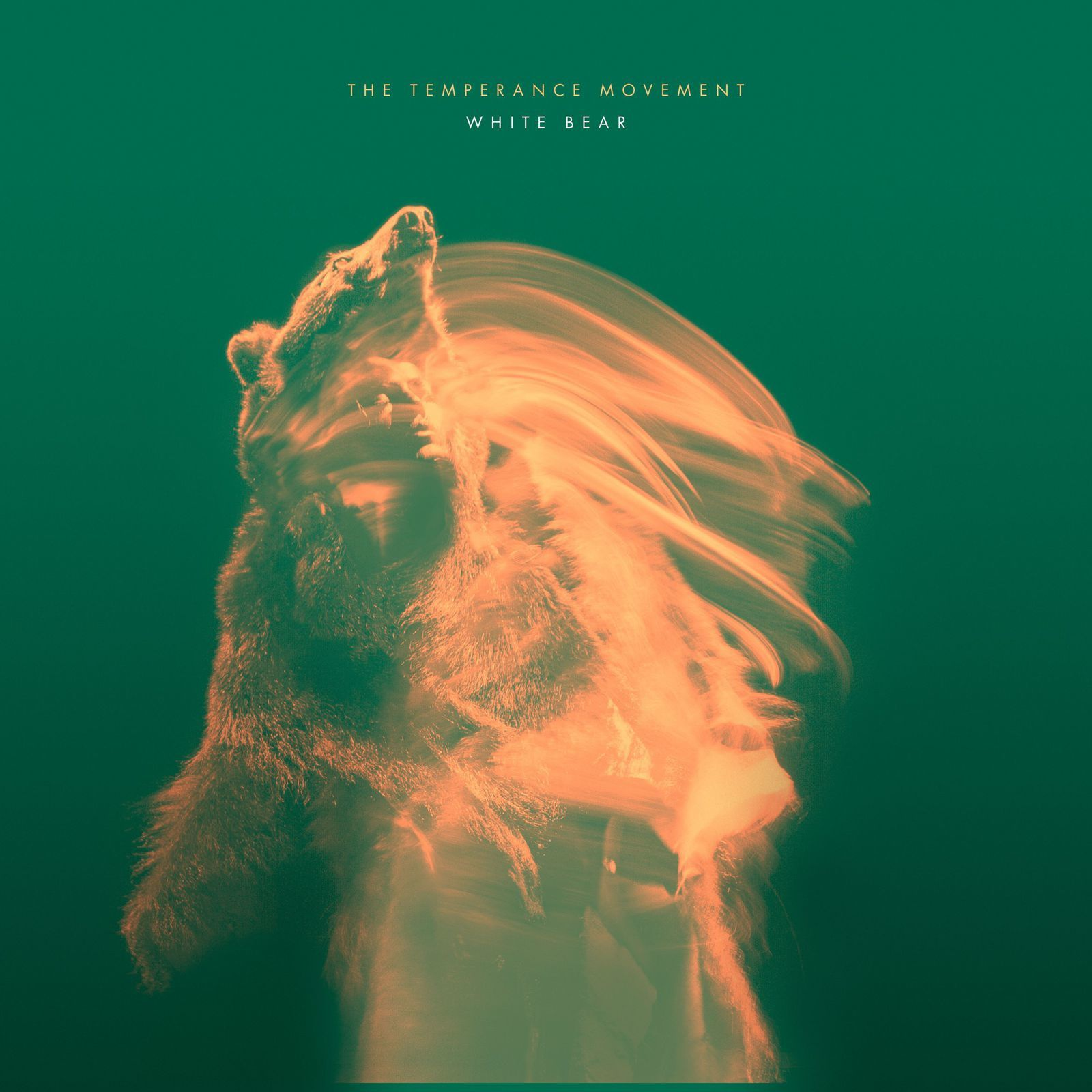 "CD review THE TEMPERANCE MOVEMENT ""White Bear"""