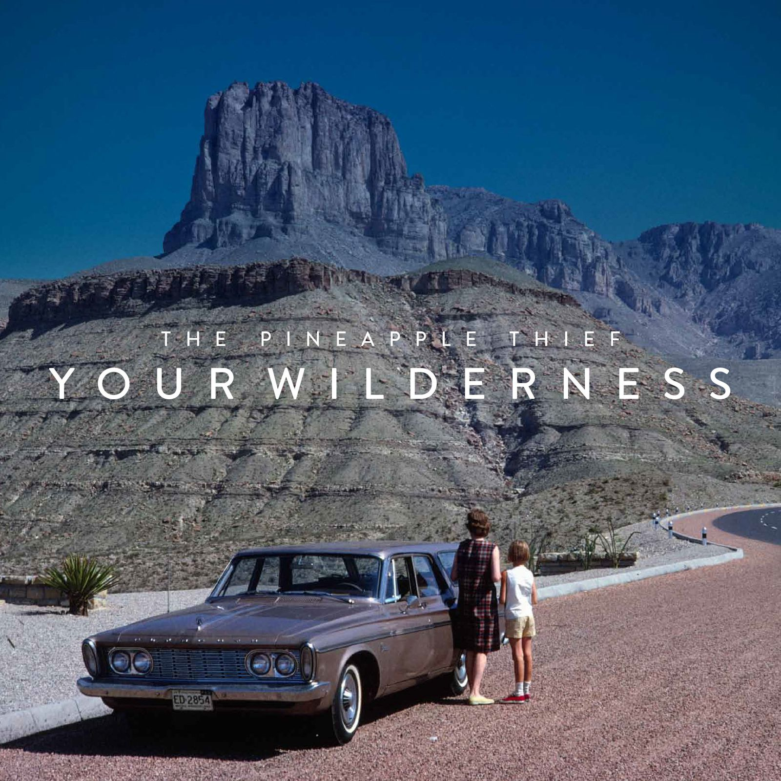 """CD review THE PINEAPPLE THIEF """"Your Wilderness"""""""