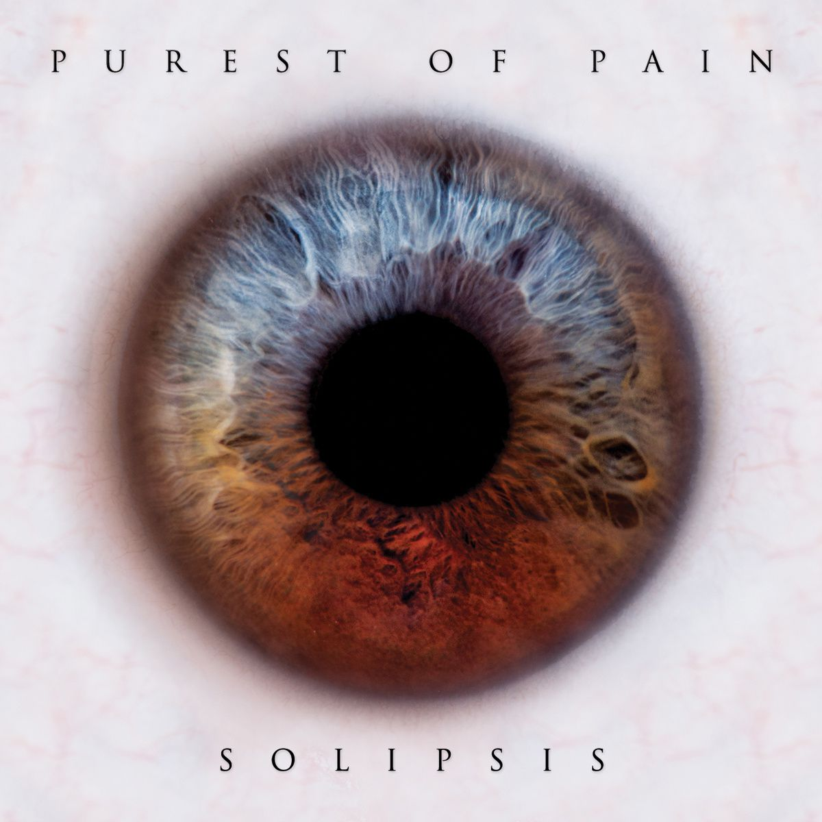 "CD review PUREST OF PAIN ""Solipsis"""