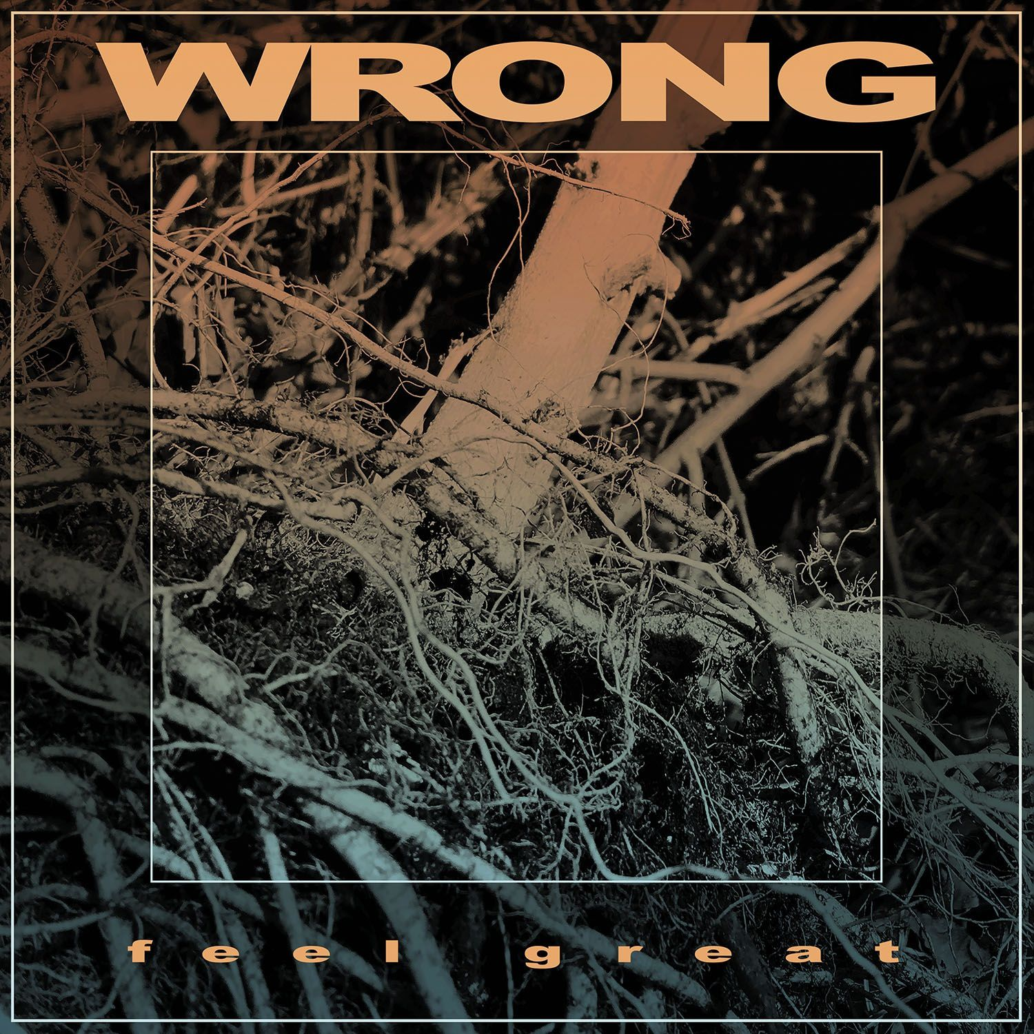 """CD review WRONG """"Feel Great"""""""