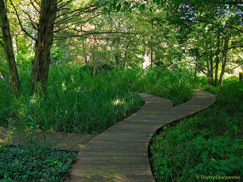L'Arboretum de Chatenay-Malabry