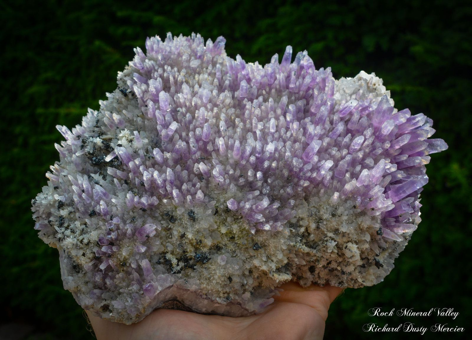 Amethyst with Pyrite and Galene from Chala mine, Bulgaria