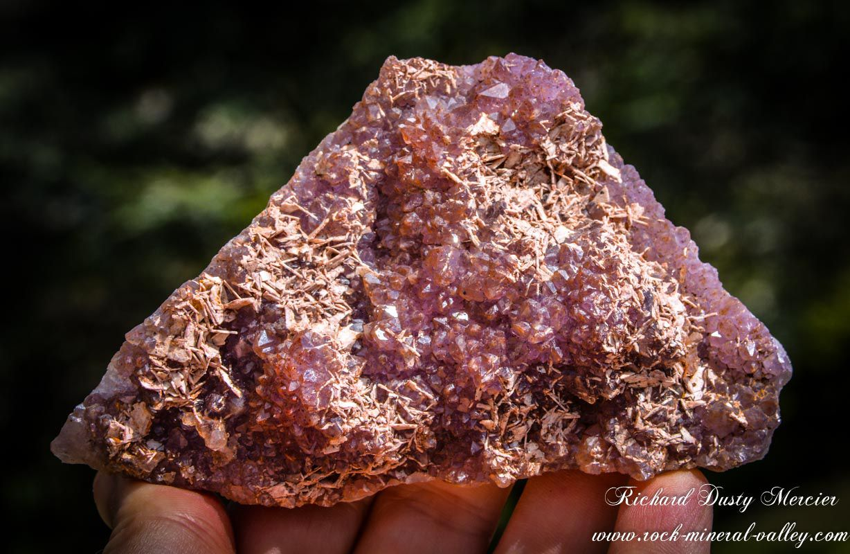 """Amethyst """"Chocolat"""" (Hematoide) with Barite from Blue Points Mine (formerly Diamond Willow Mine), Pearl, near Thunder Bay, Ontario, Canada (size: Small Cabinet)"""