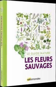 Les fleurs sauvages : le guide nature, Salamandre, 2019