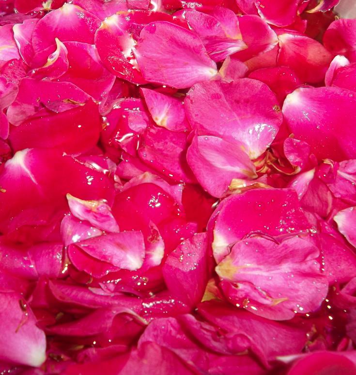 bain petale de rose good confiture de ptales de roses with bain petale de rose bois laque et. Black Bedroom Furniture Sets. Home Design Ideas
