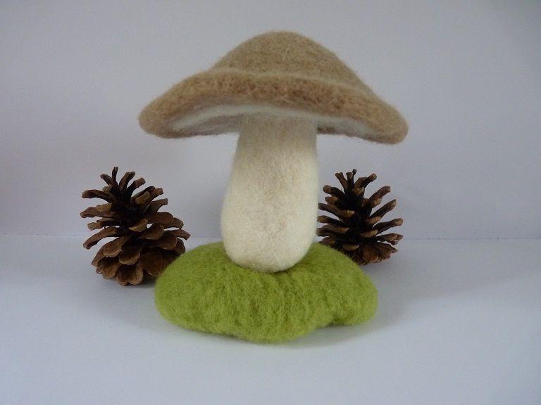 Après la pluie... un champignon !