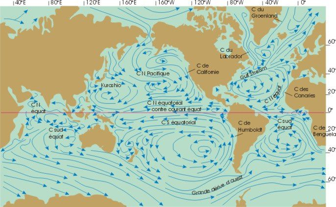 Après un long voyage et de nombreux détours dans le Pacifique nord, le long de la Californie, à travers l'Equateur et autour du Pacifique sud, une partie des eaux du courant japonais Kuroshio finit par se mêler au Courant de Humboldt. La radioactivité de Fukushima a-t-elle touché les côtes du Pérou ?