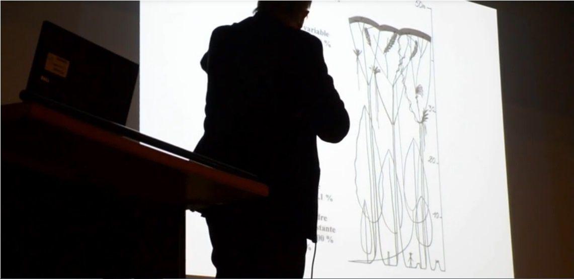 Francis Francis Hallé montrant une coupe de la forêt primaire tropicale. La majorité des espèces se trouve à l'étage de la canopée, au sommet (en noir sur le dessin). Quand ils déboisent les forêts tropicales, les hommes qui coupent à la tronconneuse les arbres de 70 m de haut ne réalisent pas ce qu'ils font. Capture d'écran de la vidéo prise par Yves Bonis lors de la conférence à Versailles le 23 janvier 2015.