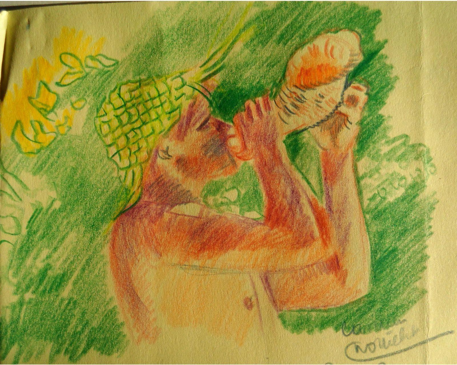 Dessin au crayon par Carmen Nottrelet (Martinique), 1994.