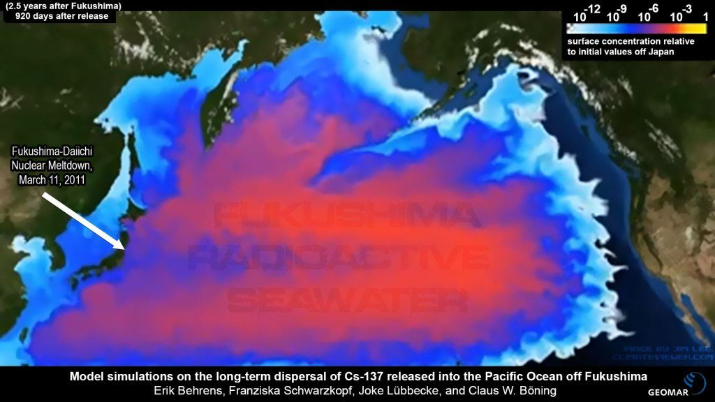 Behrens, Erik, Schwarzkopf, Franziska, Lübbecke, Joke and Böning, Claus W. (2012) Model simulations on the long-term dispersal of  137Cs released into the Pacific Ocean off Fukushima Environmental Research Letters, 7 (3). 034004. DOI 10.1088/1748-9326/7/3/034004.