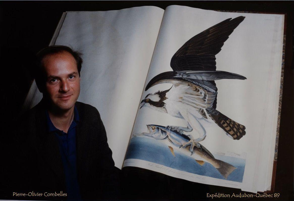Devant l'exemplaire des Birds of America de John James Audubon à la Bibliothèque centrale du Muséum, à Paris