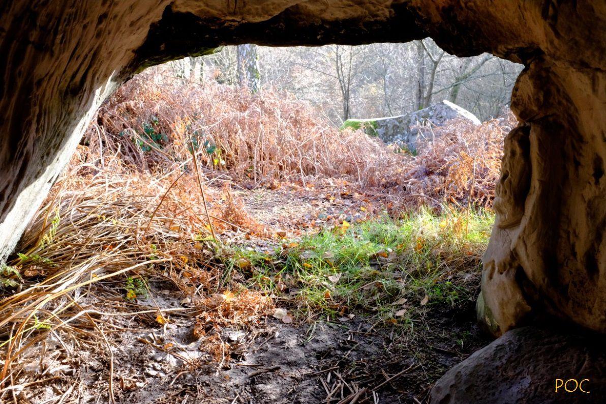 La grotte du Basajaun au sommet de la montagne, dans la forêt. Là, il se connecte au monde des Esprits, des Laminaks et des Jentilaks, ses lointains ancêtres qui y laissèrent des signes gravés dans la pierre.