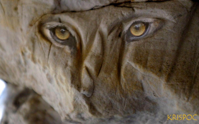 Le visage félin gravé dans la paroi à l'intérieur de la caverne, fait de quelques courbes symétrique entrecroisées. Krispo a ajouté des yeux de tigre à ma photo.