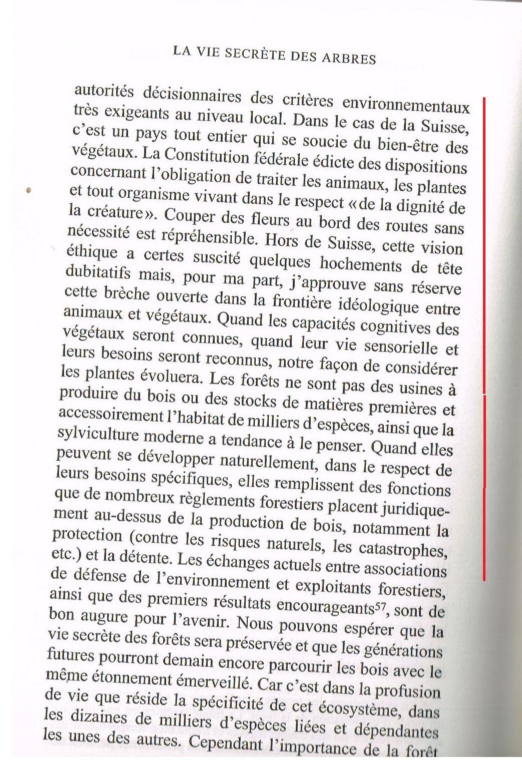 """Coupe rase aux Vaux de Cernay, dans le Bois domanial des Vindrins (Forêt """"de protection"""" de Rambouillet)"""