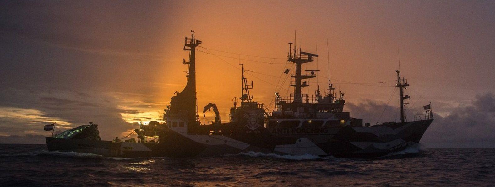 Entretien avec l'Amiral Paul Watson (Sea Sheperd) sur RT
