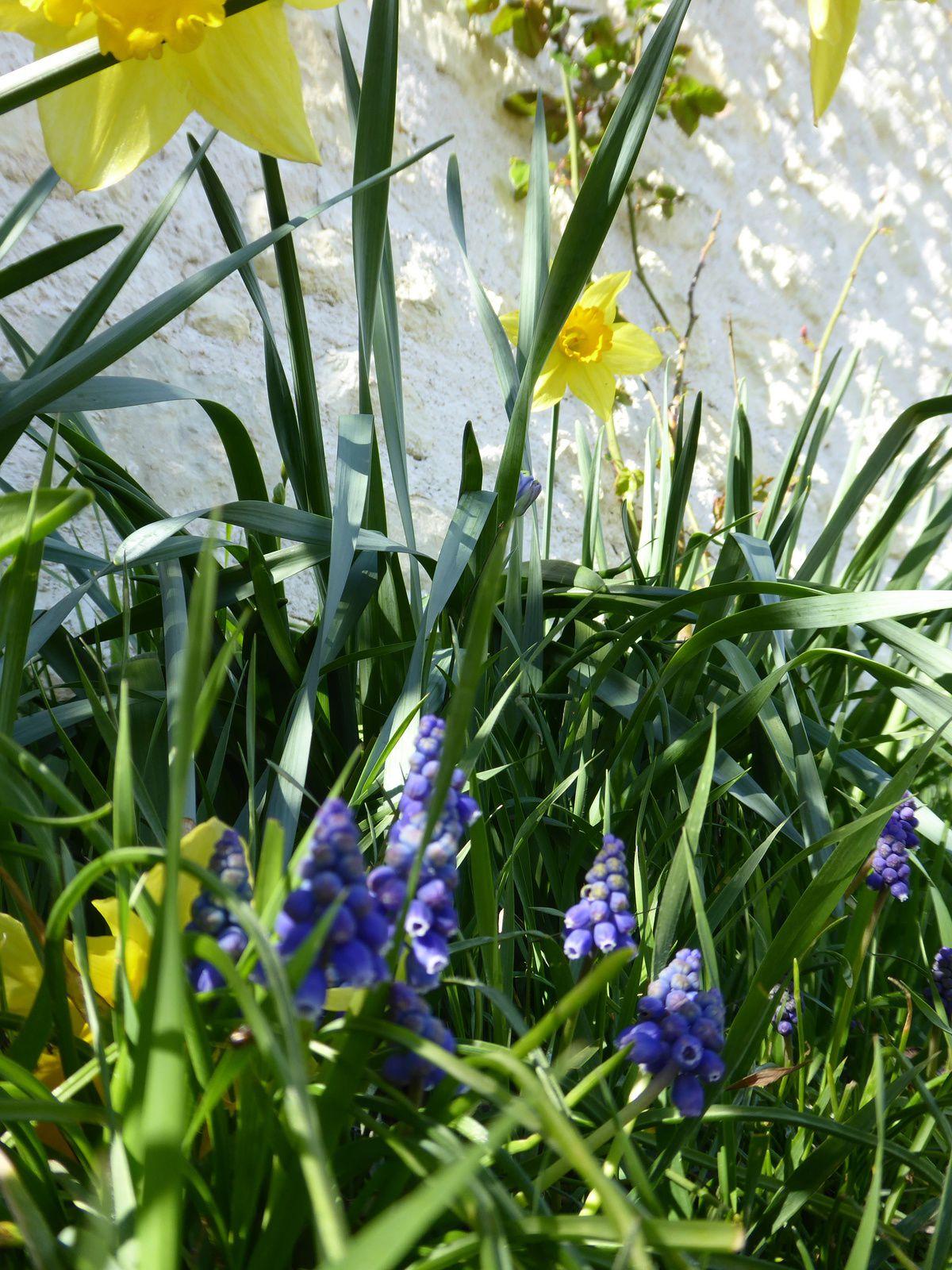 J'aime incontestablement le printemps...