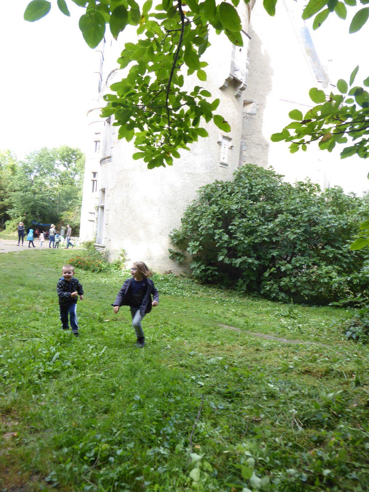 Le château de Fougeret