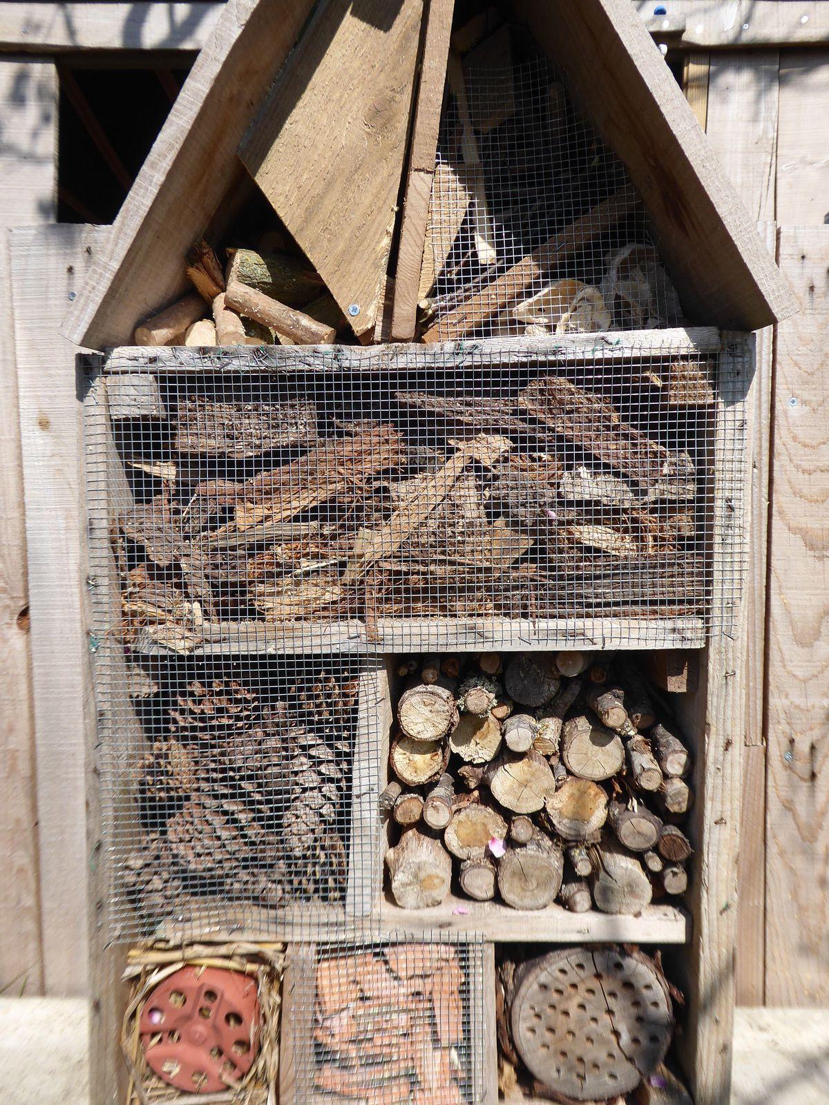La cabane à insectes