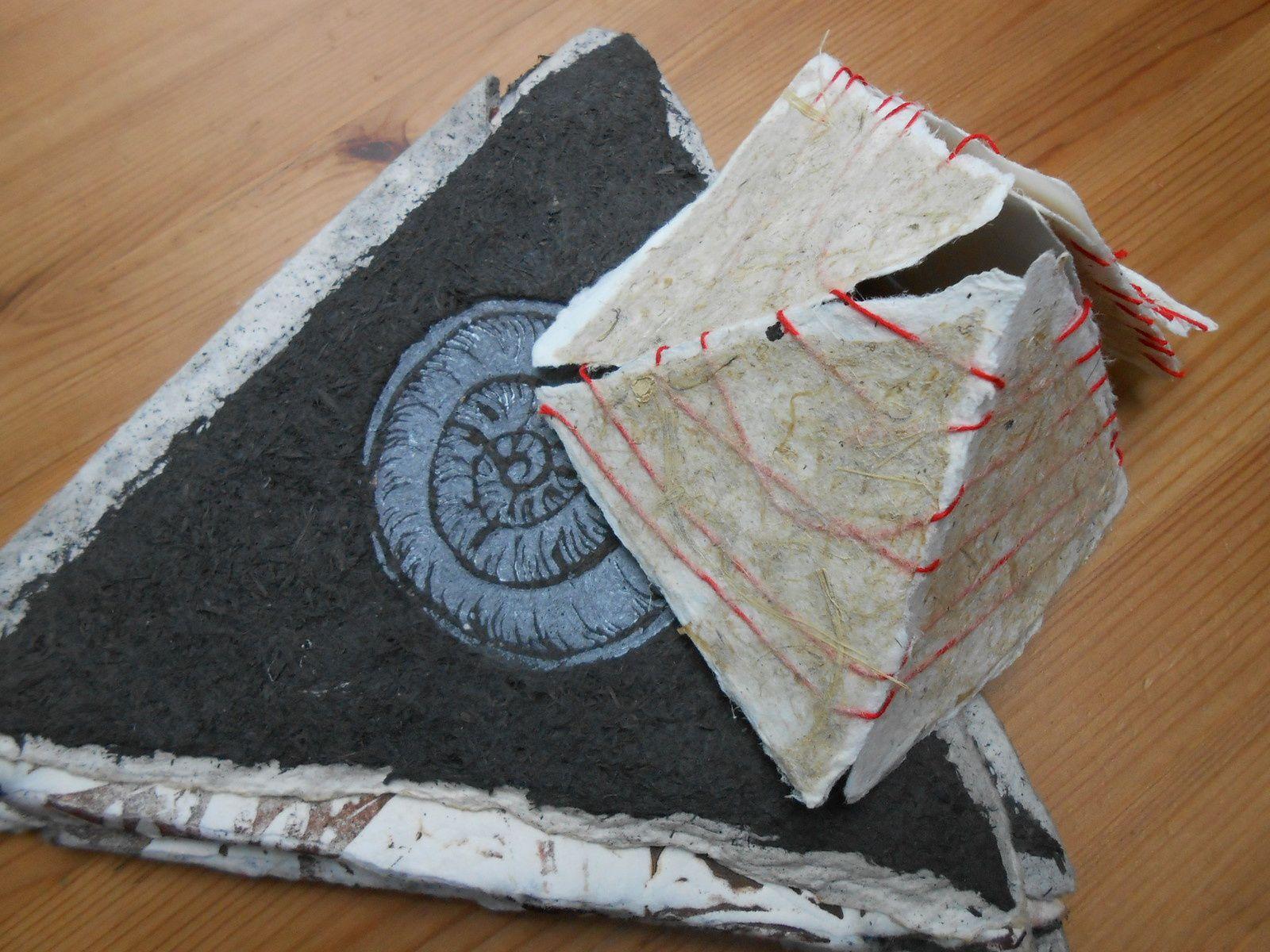 petit format cette fois avec des papiers végétaux , en devenir pour la gravure!