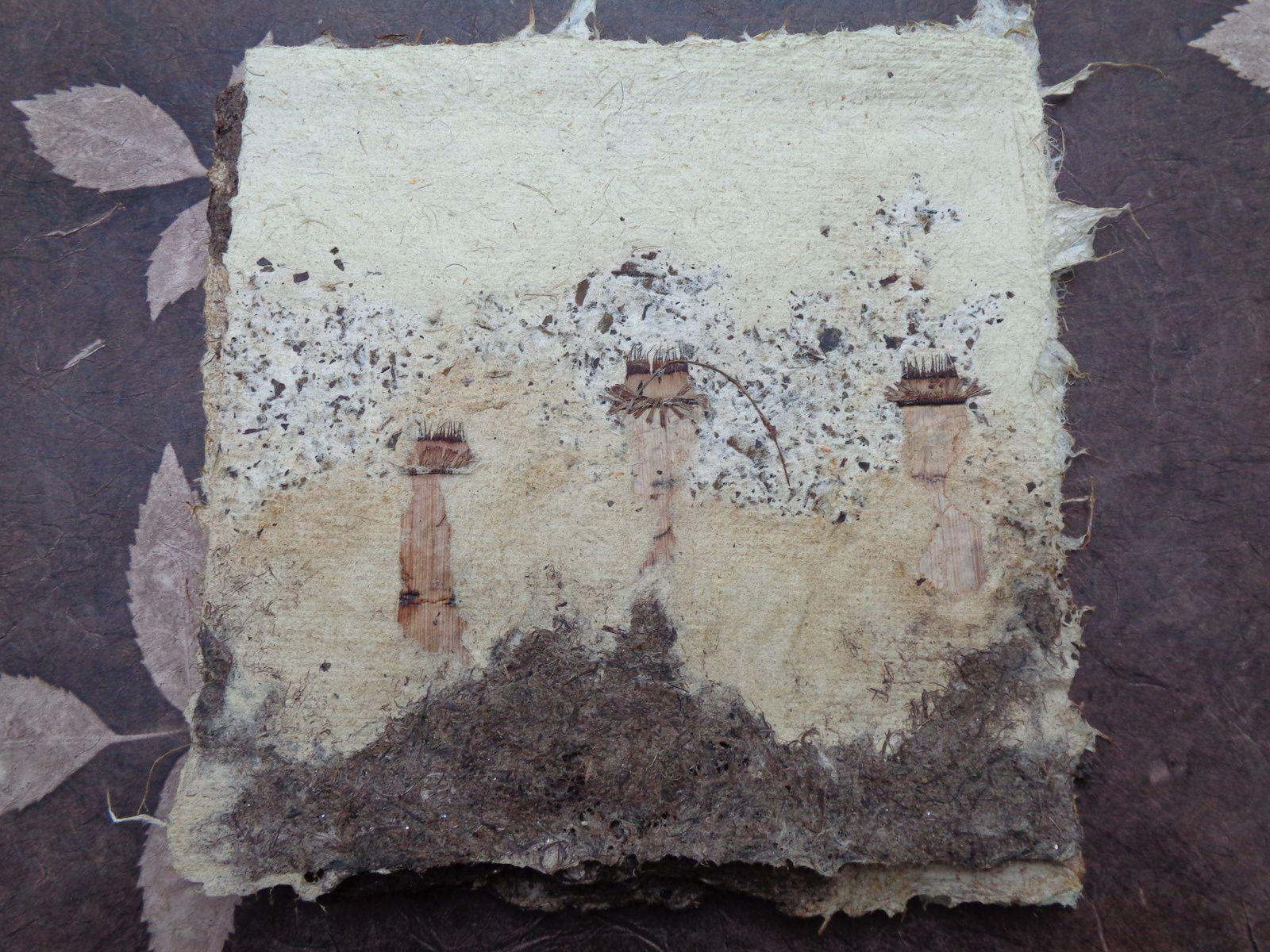Plumets de pampa, de roseau, de jonc, de racines de carex, de tiges de lavande, de confiture de figue, , de stipa