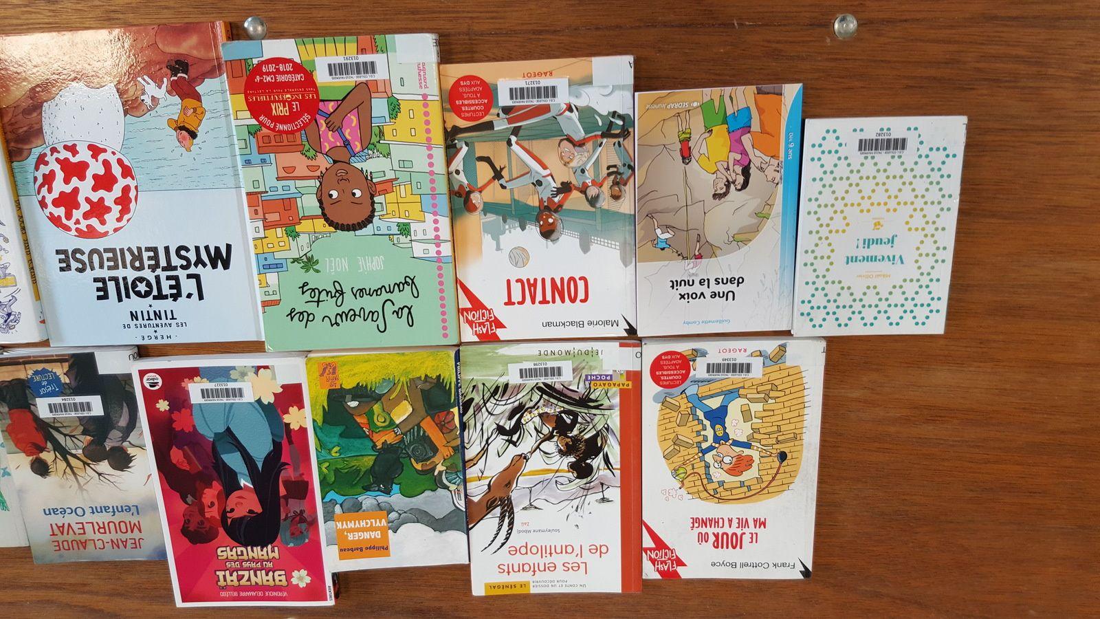Tu te ranges du côté des petits lecteurs ? Voici les livres de la sélection qui peuvent te plaire.