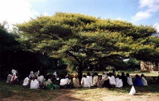 Comment faire de sa classe virtuelle un arbre à palabres ? Un cercle de lecture à distance.