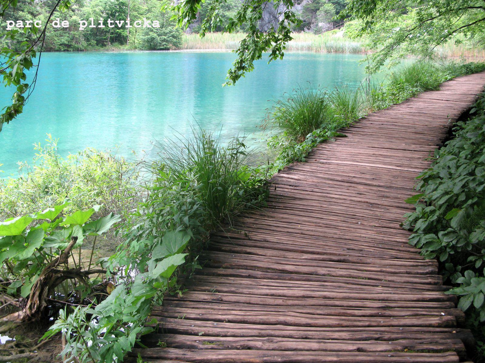 le parc de Plitivice en Croacie: