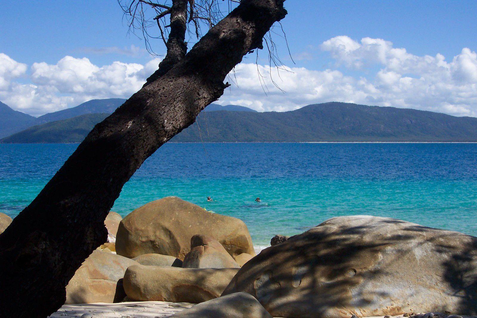 La barrière de corail d'Australie,fritzroy Island