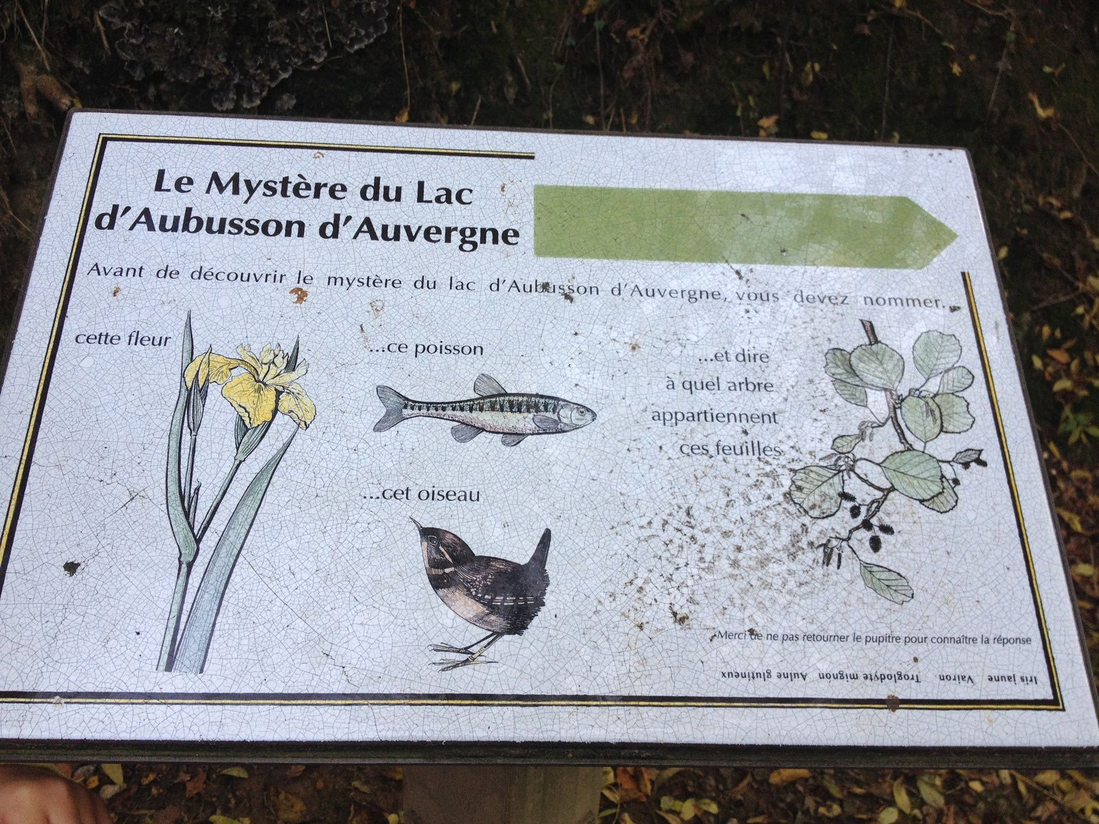 lac Aubusson informations nature forets animaux