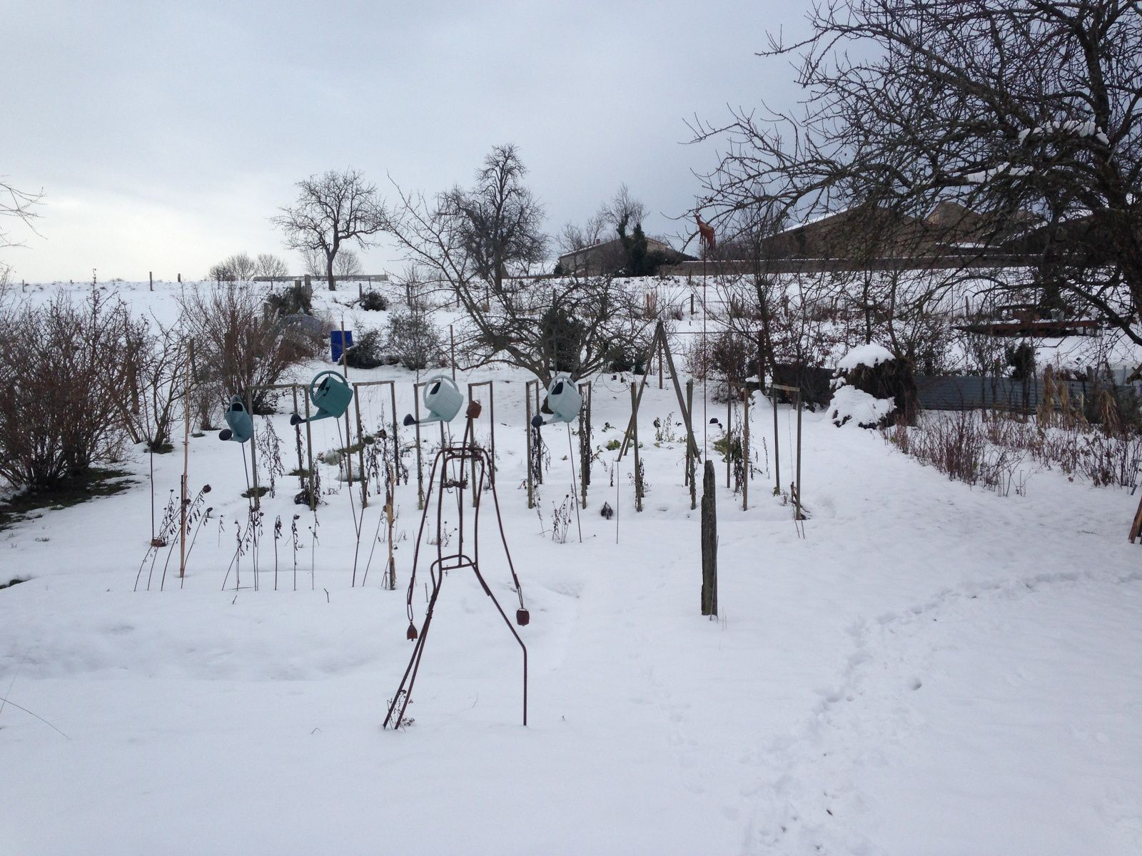 #jardin #hiver #france #charlotteblabla
