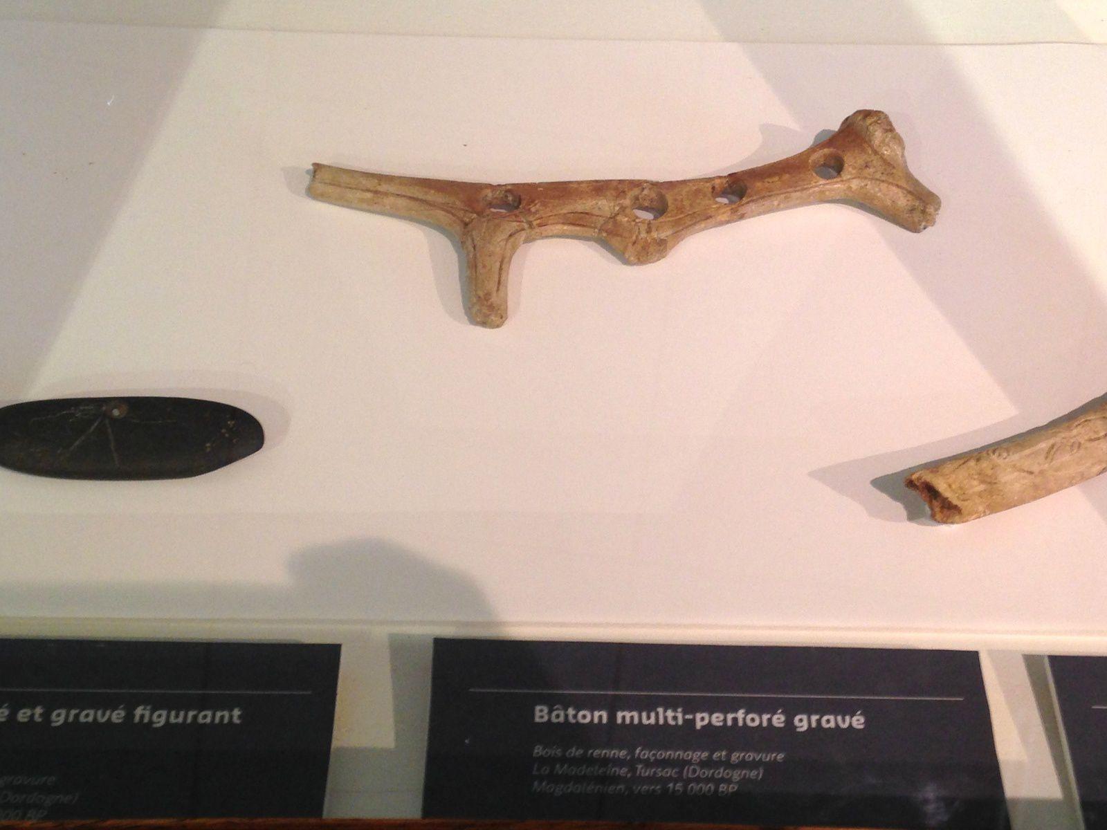 #os #musée #Aurignacien #charlotteblabla blog