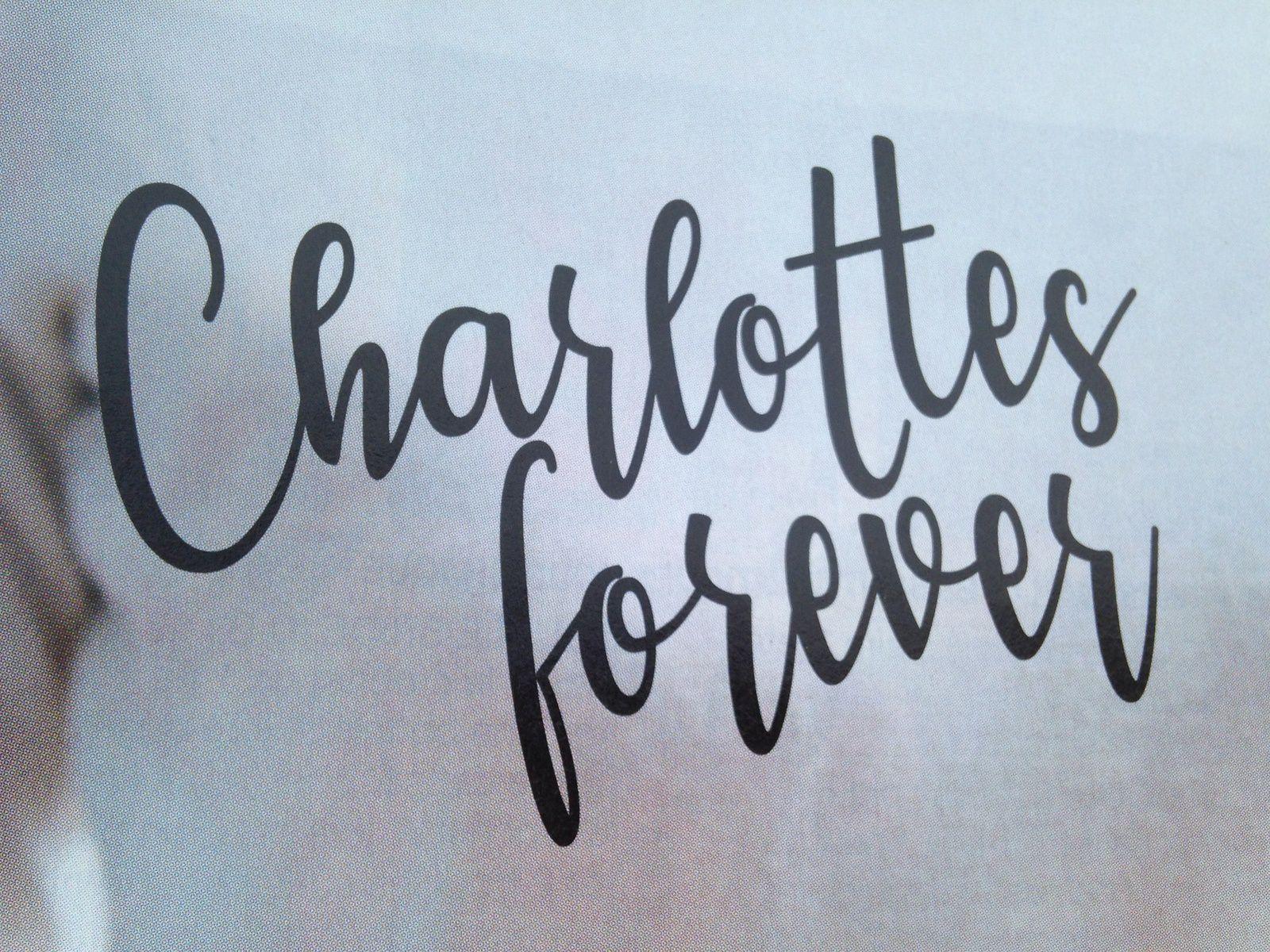 #charlotte #gateau #charlotteblabla blog