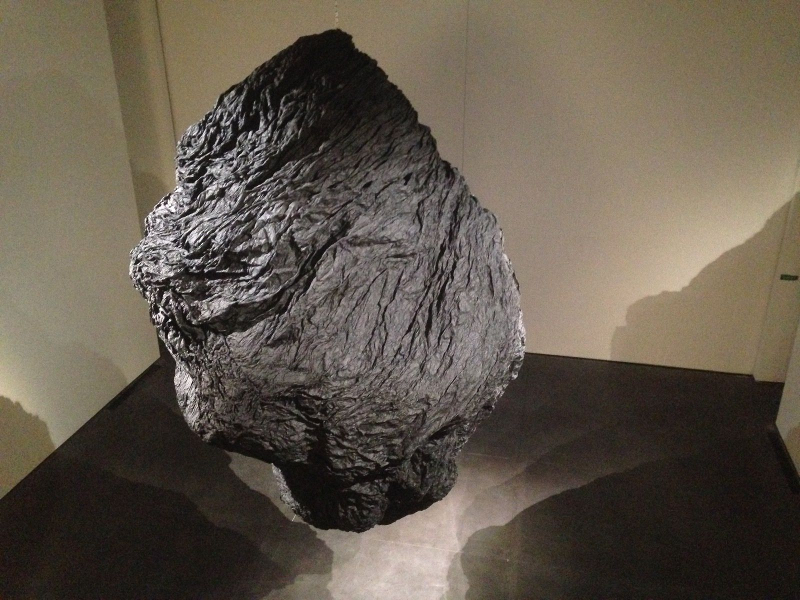 #exposition aux #abattoirs d'une #Métorite géante, d'#EduardoBasaldo #charlotteblabla blog