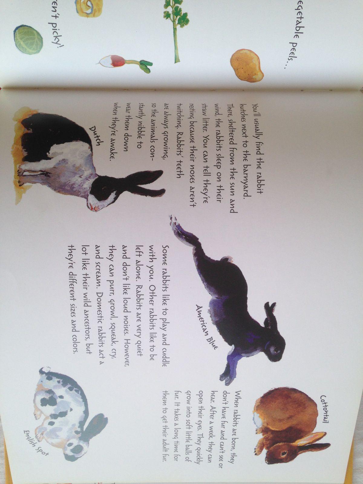 #Animal on the #farm english book , sonia goldie, pascalle estellon anne weiss #charlotteblabla blog