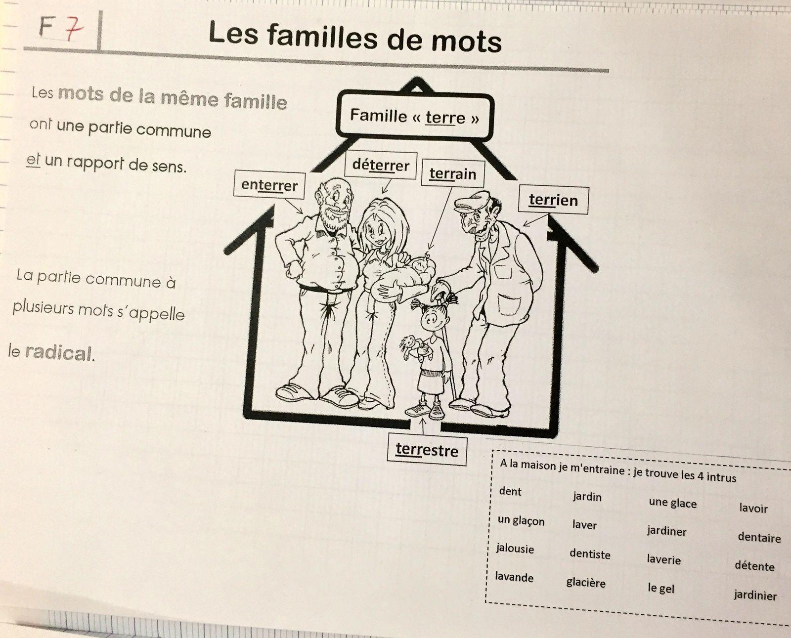 #famille de #mot  #cours de français #CP sur #charlotteblabla blog