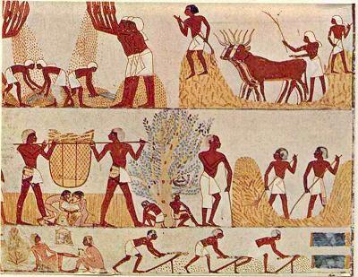 EGYPTE AU LOGIS