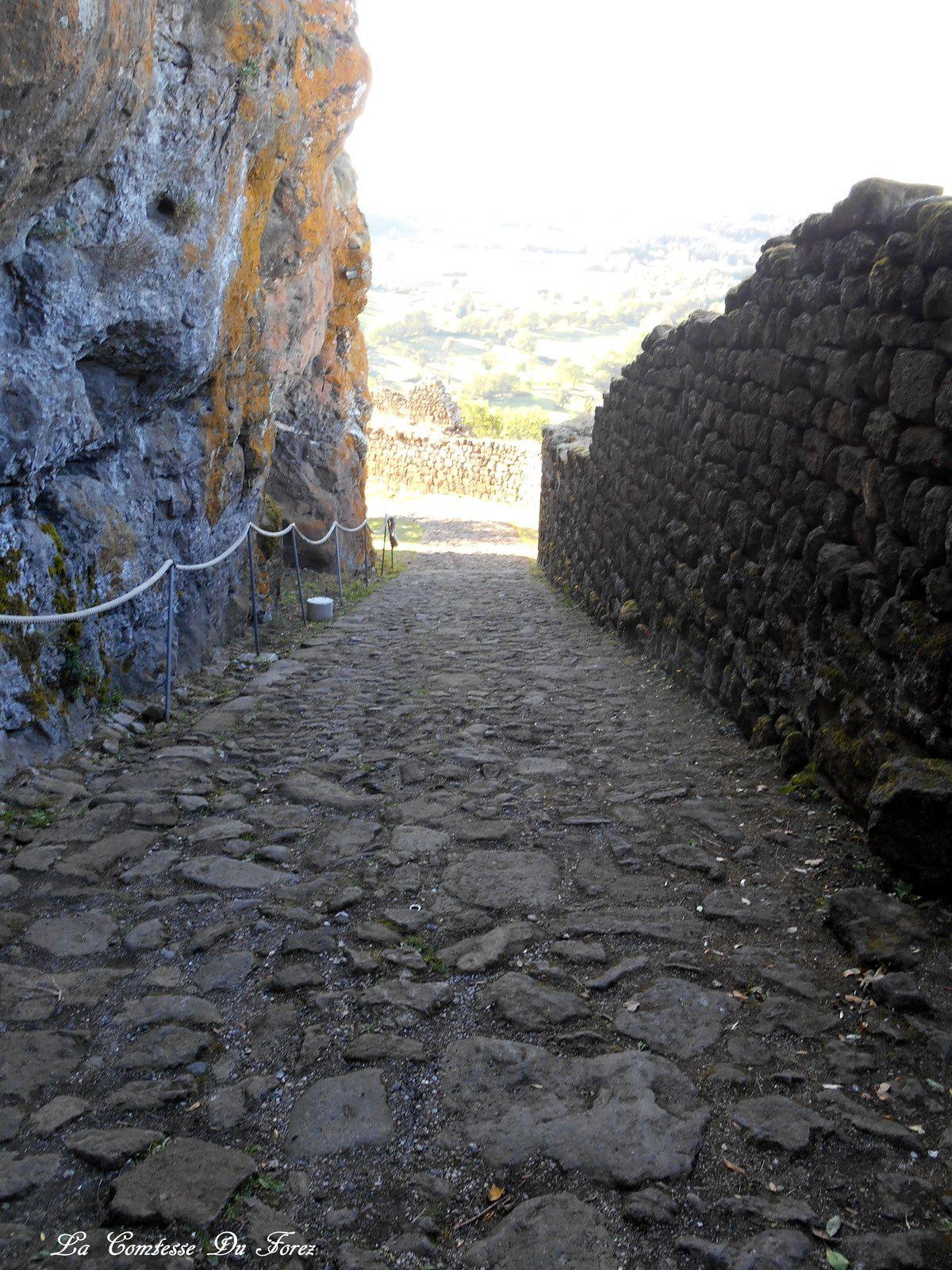 Forteresse de Polignac  (43000 Haute-Loire)