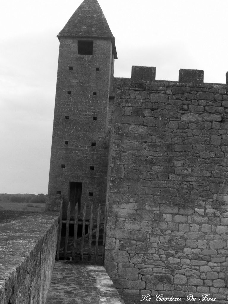Château de Beynac (24220 Beynac-et-Cazenac)