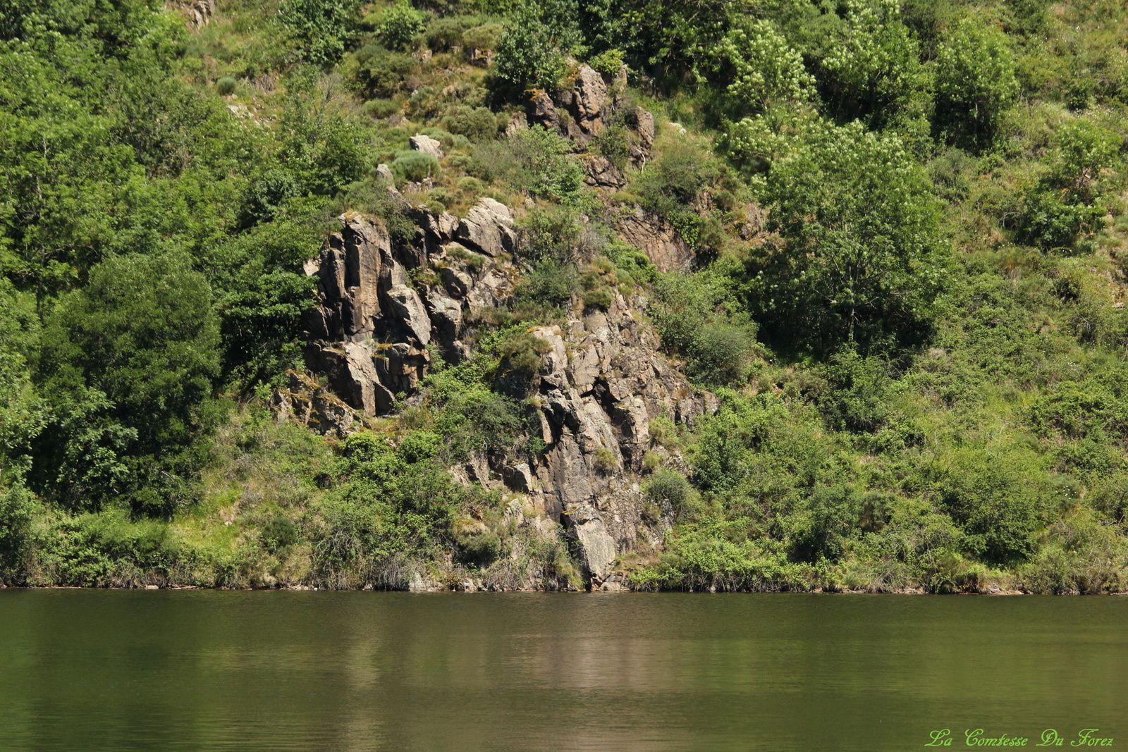 Promenade en bateau sur les gorges de la Loire (42230 Saint Etienne)