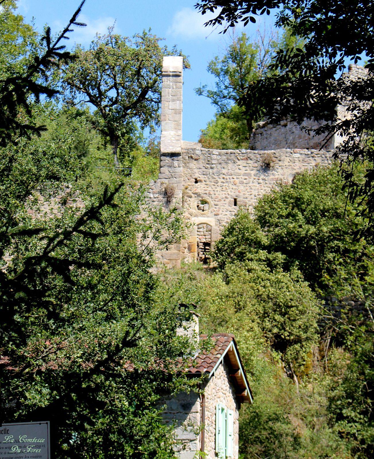 Château de Salt-En-Donzy (loire, 42110)