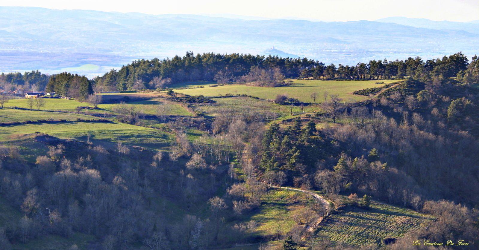 Plateau de la Danse (Saint-Victor-sur-Loire 42)